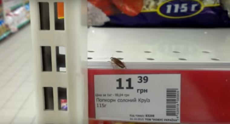 У супермаркеті «торгують» живими тарганами? (ВІДЕО)