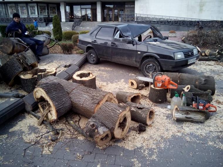 А якби на Гройсмана? Поки правоохоронці просили франківчан позачиняти вікна, на авто поліцейських впало дерево
