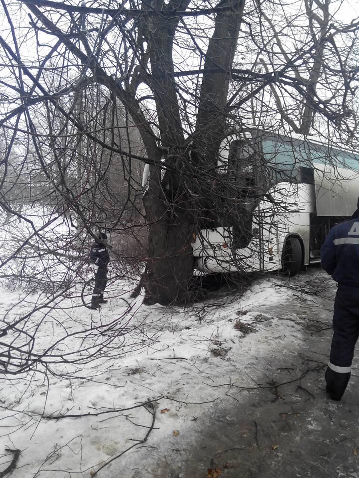 На Косівщині пасажирський автобус врізався у дерево, є постраждалі