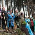 На Прикарпатті посадять 5 млн саджанців дерев
