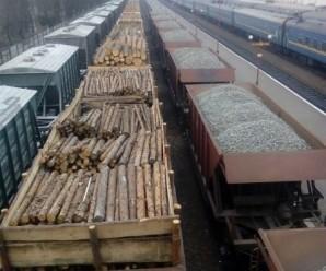 В Івано-Франківську закликають підтримати акцію проти вирубки Карпат