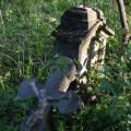 На Прикарпатті прибрали кладовище, яке поглинув ліс