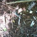Жах: територію біля франківського міського озера облюбували наркомани (фото)
