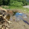 Прикарпатці засмітили річку Прут відходами деревообробки
