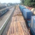 З Прикарпаття знову вивозять десятки вагонів лісу