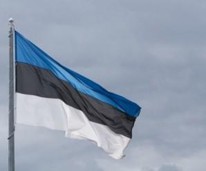 В Естонії знайдено скарб епохи вікінгів