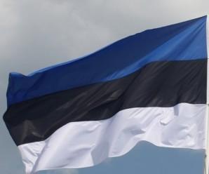 """Естонія видала Україні свого громадянина, що воював за """"ЛНР"""""""