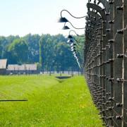 На Прикарпатті засудили серійного крадія до чотирьох років