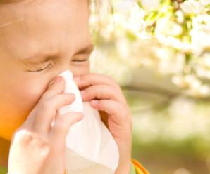 Медики Прикарпаття застерігають: прийшов час сезонних алергій (ВІДЕО)