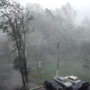 Повалені дерева, обірвані дроти та пошкоджені автівки: Негода наробила шкоди на Прикарпатті