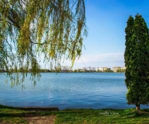 В Івано-Франківську на міському озері п'яний батько хотів навчити двох маленьких дітей плавати.