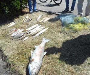 Викрито ще одне браконьєрське варварство на міському озері (Фото)
