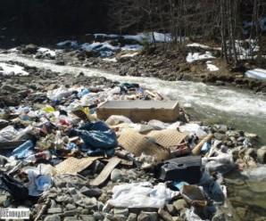 Не життя, а мука: У карпатському селі майже сорок років діє незаконне сміттєзвалище