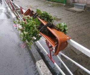 У Надвірній вандали знищили пластикові квітники (фотофакт)