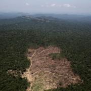 Вчені назвали 2015 рік найгіршим за всю історію спостережень за довкіллям