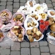Ринки на Прикарпатті переповнились продавцями грибів.