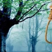 """Нові подробиці самогубства прикарпатця на кладовищі: Чоловік говорив, """"що його кличе до себе померла дружина"""