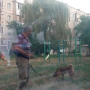 Собачі фекалії на ігровому майданчику. У Калуші чоловік вигулює собаку на дитячій площадці. ФОТО