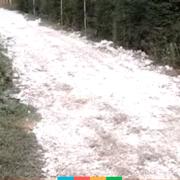 На Франківщині чоловік полатав дорогу шкідливою білою речовиною