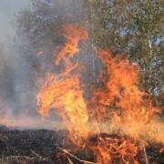 Пожежі сухої трави на Івано-Франківщині набувають загрозливих масштабів