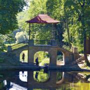 Чарівні ліси. 5 українських дендропарків, які обов'язково треба відвідати