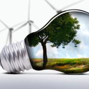 Як прикарпатське містечко Долина перетворилась на лідера в Україні у сфері енергоефективності