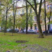 Сакури, липи, ясені та райські яблуні: Івано-Франківськ поповниться молодими насадженнями (фото)