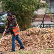 Де розташувався Франківськ у рейтингу найчистіших міст України (ІНФОГРАФІКА)