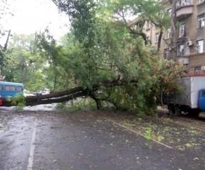 На Одещині оголошено надзвичайний стан(відео )