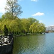 Наступного року в міське озеро пустять чисту воду