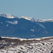 У мережі з'явилися неймовірні світлини засніжених Карпат (фото)