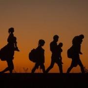На Прикарпатті затримали 20 нелегальних мігрантів