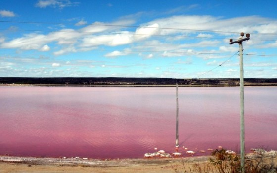 420755-r3l8t8d-650-beautiful-pink-lake_97385-1920x1200
