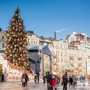 Новорічна ялинка, яку Івано-Франківщина подарує Києву, важитиме 10 тонн