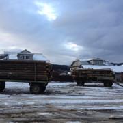Прикарпатська прокуратура зупинила підприємця, який хотів незаконно експортувати ліс (ФОТО)