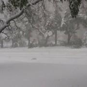 Вхурделило: Як виглядає зараз Івано-Франківськ під снігом