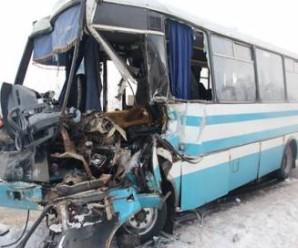В Бердичівську міську лікарню привезли 16 постраждалих в ДТП за участю автобуса Бердичів-Житомир