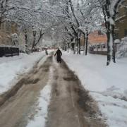 Франківські комунальники не звільнили місто від снігу (фоторепортаж)