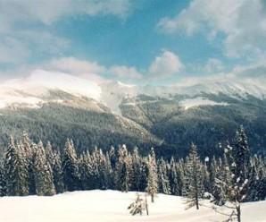 Карпати знову засипає снігом (відео)