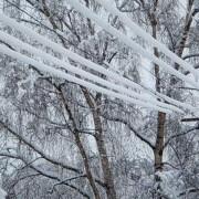 На Івано-Франківщині знеструмлено 37 населених пунктів