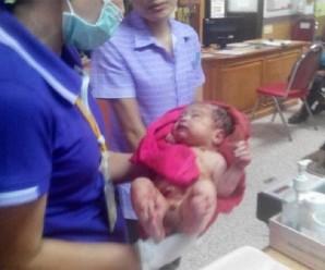 Шокуюча знахідка: жінка знайшла під деревом новонародженого малюка