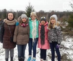 Для дітей таки встановлять живу ялинку у центрі Івано-Франківська (ФОТО)