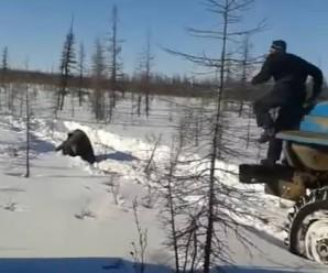 """У Якутії чоловіки на """"Уралах"""" задавили ведмедя (відео)"""