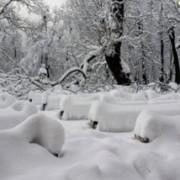 """На Україну насувається циклон: потепліє, а сніг йтиме """"шапкою"""""""