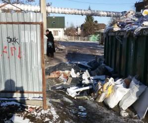 В Івано-Франківську на смітник для будвідходів невідомі викинули туші свиней (фотофакт)