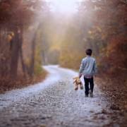 Викрадення, зґвалтування та втечі. Про недитячі справи дітей Франківщини