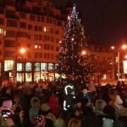 В Івано-Франківську на площі перед Драмтеатром засяяла жива ялинка (фото+відео)