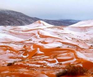 У Сахарі вперше за 37 років випав сніг