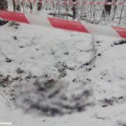 Наслідки були б просто вражаючими: на Львівщині знайшли щось страшне (ФОТО)