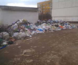 Влада Богородчан не може впоратися зі сміттям (фото)